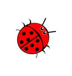 Beetle ladybug red vector image