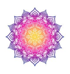 circular pattern floral mandala on white vector image