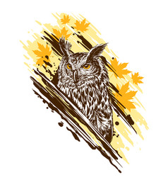 graphic detailed colorful owl with yellow eyes vector image