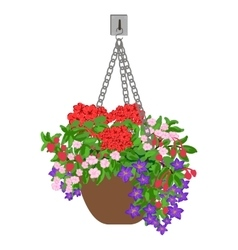 hanging pot vector image