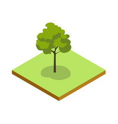 park plant and green grass isometric 3d icon vector image