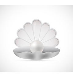 Shell pearl cartoon vector