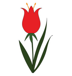 simple on white background a red flower with vector image