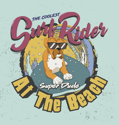 the coolest surf rider super dude at beach vector image