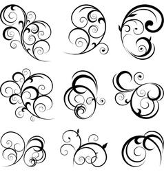 Floral ornament vector