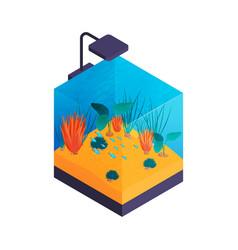 Aquarium with lamp composition vector