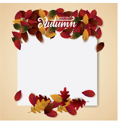 autumn background blank layout vector image