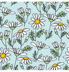 chamomile flower color seamless pattern vector image