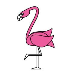 Exotic animal swan vector