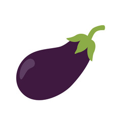 fresh eggplant vegetable isolated icon eggplant vector image
