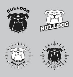 set logo bulldog head vector image