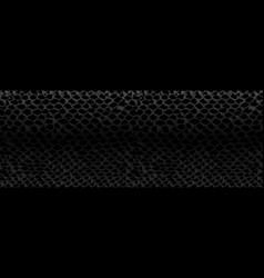 Snake skin texture vector