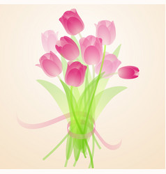 spring fresh bouquet tulips vector image