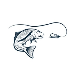 trout and lure design template vector image