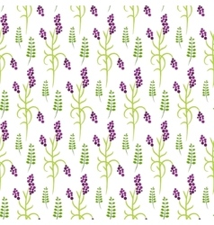 Wild flower purple plant spring field seamless vector image