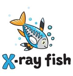 X-ray fish for ABC Alphabet X vector