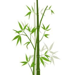 Bamboo sticks vector image