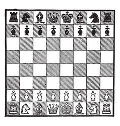 Chess vintage vector