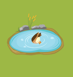 duck dives into the pond isometric vector image