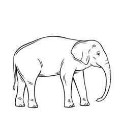 elephant isolated black icon vector image