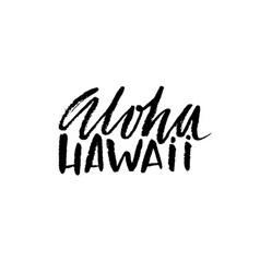 hand drawn phrase aloha hawaii modern dry brush vector image