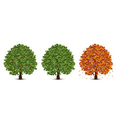 Oak trees set vector