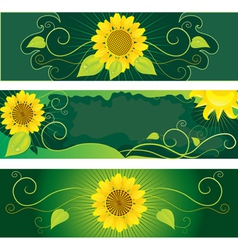 Set of backgrounds with sunflowers vector