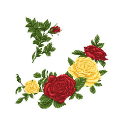 Set of yellow and red roses bouquets flowers and vector