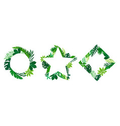 Tropical leaves and branches in shaped frames and vector