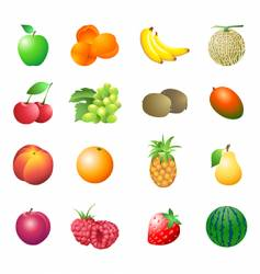 calorie table fruits vector image vector image
