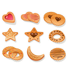 cookies vector image