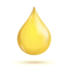 oil transparent drop vector image