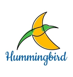 Bright hummingbird soaring in sky vector