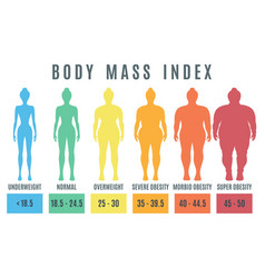 female body mass index normal weight obesity and vector image