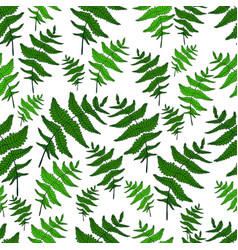 green fern leaf seamless wild forest pattern white vector image