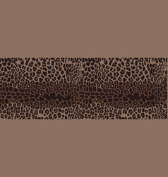 leopard seamless pattern design vector image