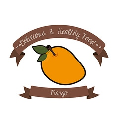 organic and healthy food vector image