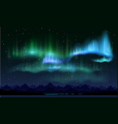 realistic northern lights vector image