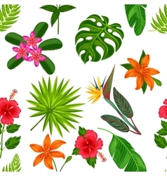 seamless pattern with tropical plants leaves vector image