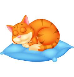 cute cat cartoon sleeping vector image