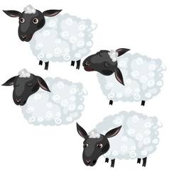 Cartoon sheep in four poses animal vector image