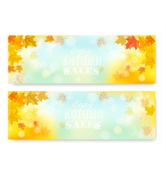Enjoy Autumn Sales Banners with Colorful Leaves vector image vector image