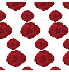 Watercolor Dark Red Rose pattern vector image vector image