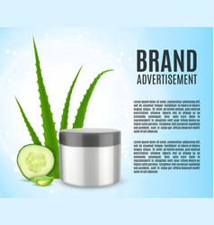 aloe and cucumber vector image