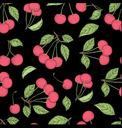 cherry pattern seamless background vector image