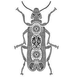 Entangle stylized black beetle hand drawn vector