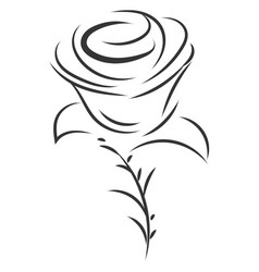 simple black and white sketch rose flower on vector image