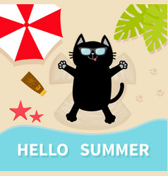 Black cat sunbathing on the beach sunglasses vector