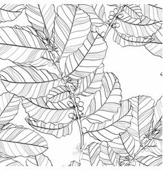 Seamless pattern with coffee plant vector