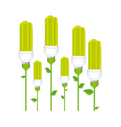 Color background with set of fluorescent lamp with vector